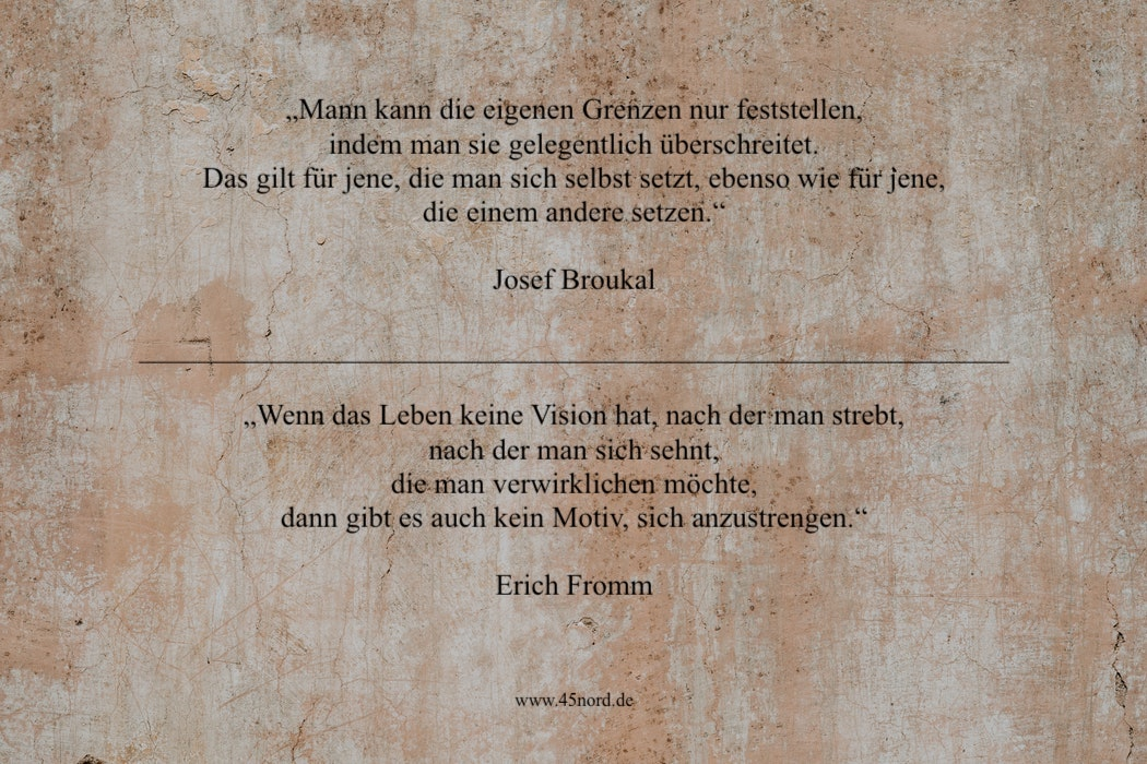 Aufgeben Zitate von Josef Broukal und Erich Fromm