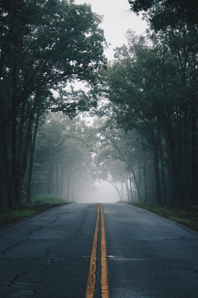 Einsame Strasse im Wald